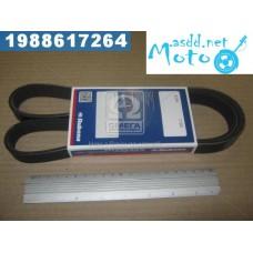 6RK-1190 UAZ fan belt 452 (manufacture Rubena) 6PK-1190