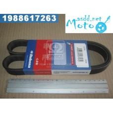6RK-1054 UAZ fan belt 452 (the engine 4091) (production Rubena) 6PK-1054